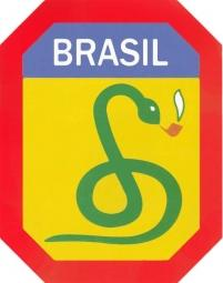 Badge of Brazilian Expeditionary Force.